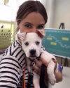 Sophia-Bush-and-her-dog-Frankie.png