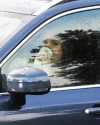 Sophia-Bush-on-set-of-Surveillance_019.png