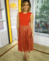 29-Septembre-2015-Sophia-Bush-The-Today-Show-NYC.png