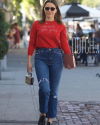 05-Fevrier-2018-Sophia-Bush-out-in-Los-Angeles.png