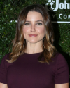 Sophia-Bush-Conservation-International-30th-Anniversary-Dinner_006.png